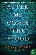 Cover-Bild zu After Me Comes the Flood von Perry, Sarah