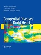Cover-Bild zu Congenital Diseases in the Right Heart von Redington, Andrew N. (Hrsg.)