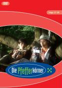 Cover-Bild zu Die Pfefferkörner von Mestre, Katharina