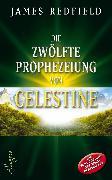 Cover-Bild zu Die zwölfte Prophezeiung von Celestine (eBook) von Redfield, James