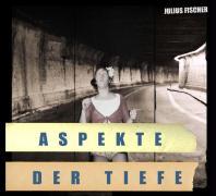 Cover-Bild zu Aspekte der Tiefe von Fischer, Julius