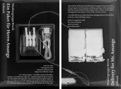 Cover-Bild zu Delivery for Mr. Assange. Ein Paket für Herrn Assange von Bitnik, Mediengruppe