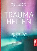 Cover-Bild zu Trauma heilen von Reddemann, Luise