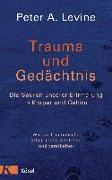 Cover-Bild zu Trauma und Gedächtnis von Levine, Peter A.