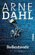 Cover-Bild zu Bußestunde von Dahl, Arne