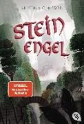 Cover-Bild zu Steinengel von Ohlsson, Kristina