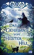 Cover-Bild zu Das Geheimnis von Hester Hill (eBook) von Ohlsson, Kristina