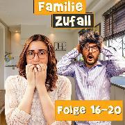Cover-Bild zu Zufall, Familie: Folge 16-20 (Audio Download)
