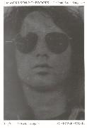 Cover-Bild zu Jim Morrison and The Doors von Sugerman, Danny (Hrsg.)