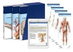 Cover-Bild zu Schünke, Michael (Beitr.): PROMETHEUS LernPaket Anatomie