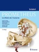 Cover-Bild zu Lüthje, Jürgen: PROMETHEUS LernPaket Anatomie Schädel