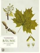 Cover-Bild zu Thorbeckes Bäume-Kalender 2021