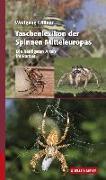 Cover-Bild zu Taschenlexikon der Spinnen Mitteleuropas von Willner, Wolfgang